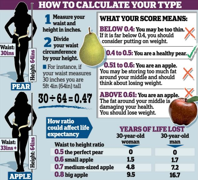 Konsyl psyllium fiber weight loss