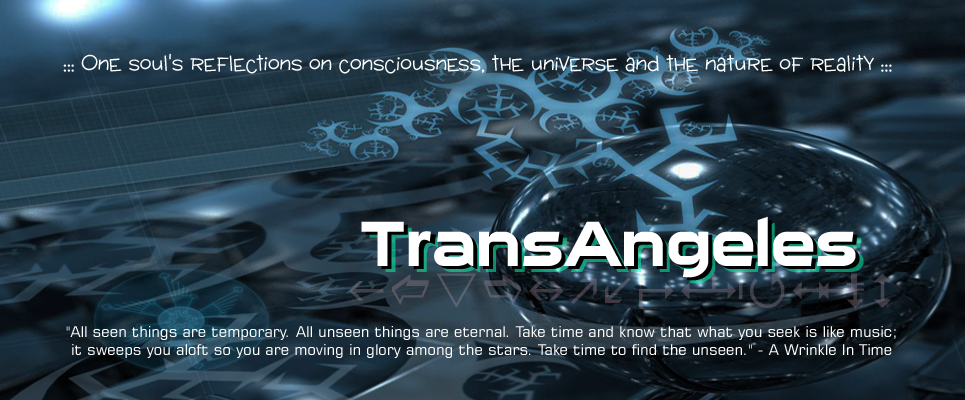 TransAngeles