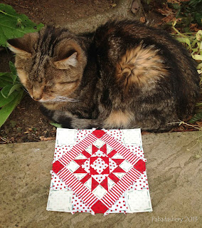 Sparky the Cat with Nearly Insane Quilt Block 28, June 2013