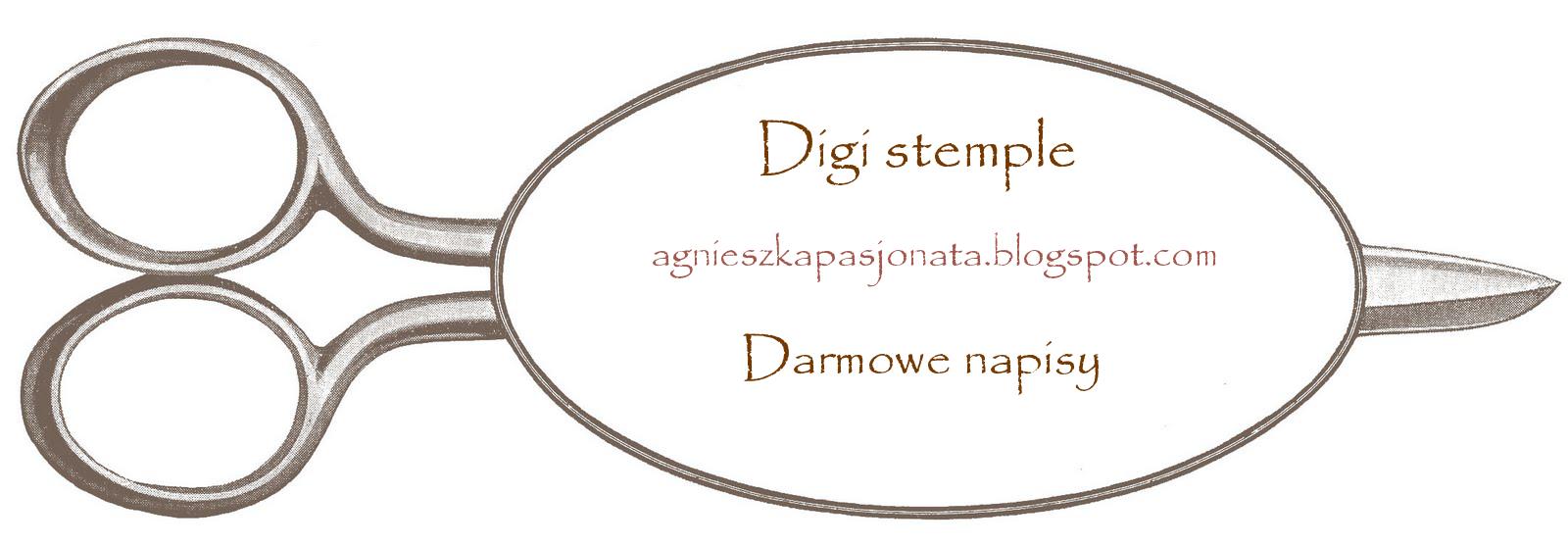 Digi u Agnieszki