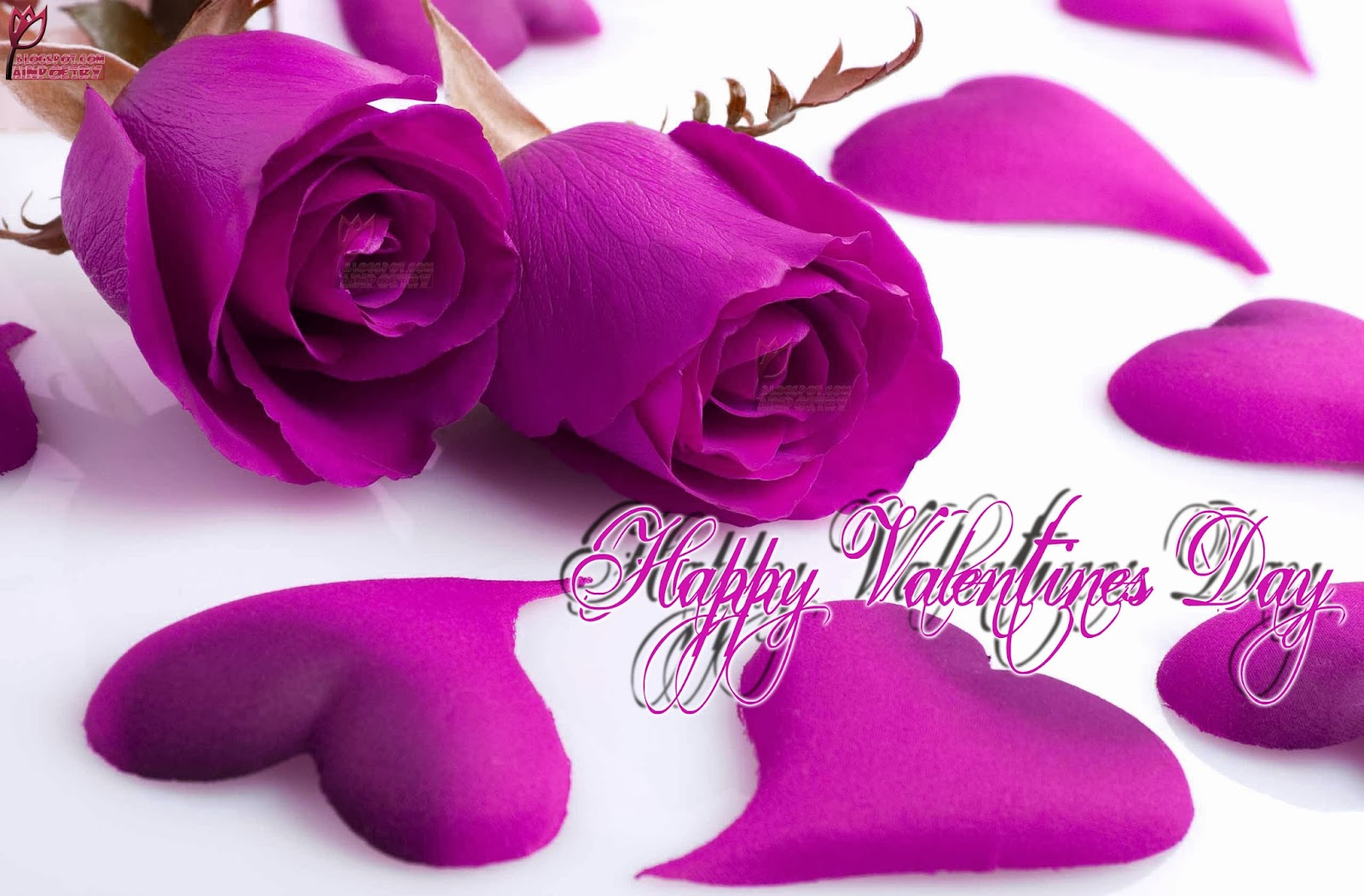Happy Valentines Day Wishes Wallpaper With Flowers And Hearts Image HD