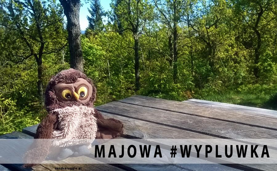 Majowa #wypluwka Vandrera, czyli co na blogu piszczy