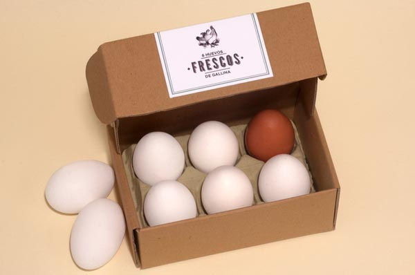 egg packaging design