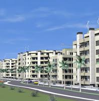 palm boulevard