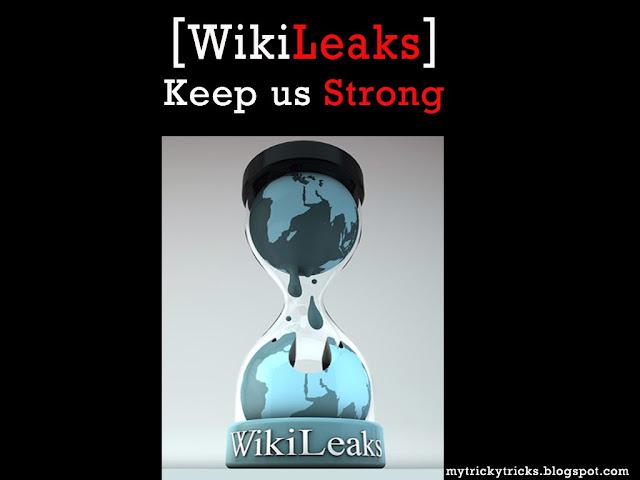 Wikileaks, Wikileaks keep us strong