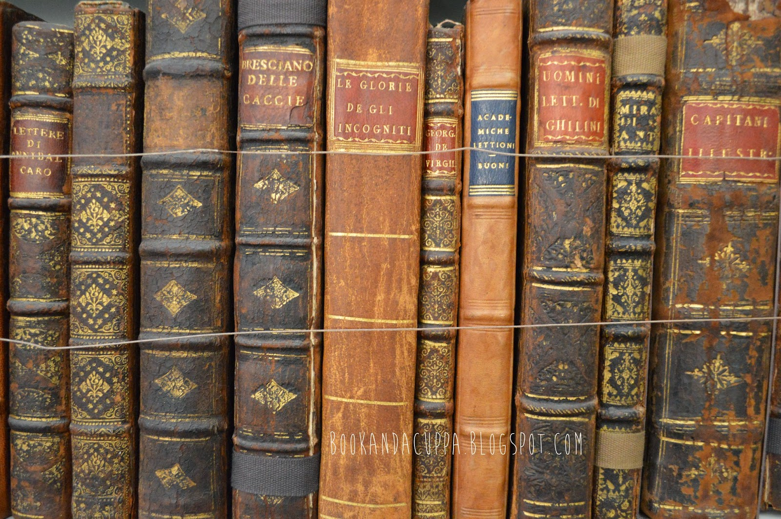 book room, library, old books, Cambridgeshire, Wimpole estate, shelves, pretty, real life Beauty and the Beast, photos, photographs, ladder, classic, brown book spines
