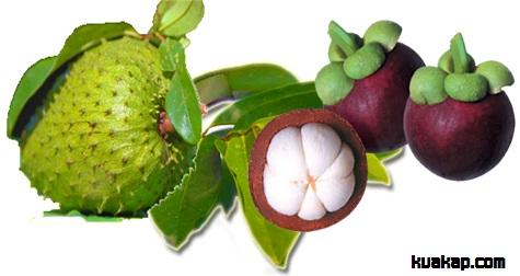 inilah Obat Tradisional Bahan Alami Dan Ampuh Membasmi Penyakit Kulit