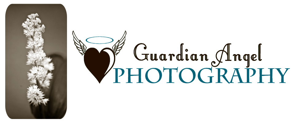 Guardian Angel Photography