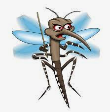 Het dodelijkst is dus malaria, een parasitaire infectie, die muskieten direct in de bloedstroom injecteren wanneer zij bijten.
