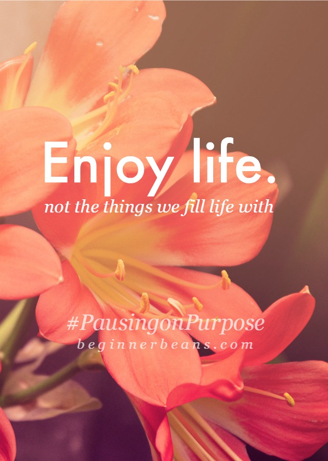 Enjoy life. (Not the things we fill life with.)