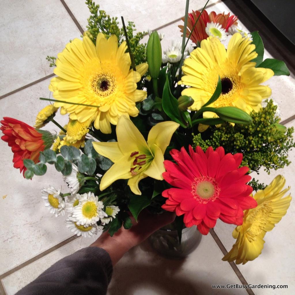 Fresh cut flowers help with winter blues