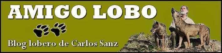 AMIGO LOBO: Blog lobero de Carlos Sanz