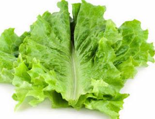 manfaat daun selada air