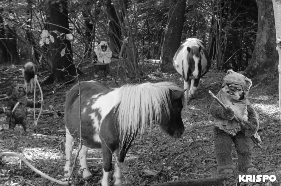 imagen en blanco y negro de tres ewoks con caballos en bosque de jaizkibel de hondarribia