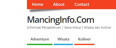 mancinginfo.com