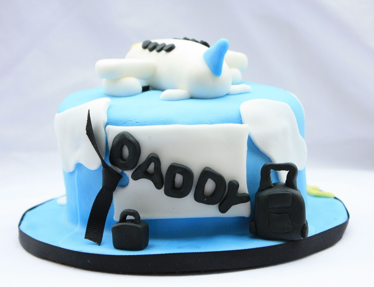 Cakealicious Surprises Fathers Day Cake Airplane Theme