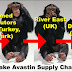 The Fake Avastin Supply Chain: China, Syria, Denmark, Switzerland, UK, US, Doctors