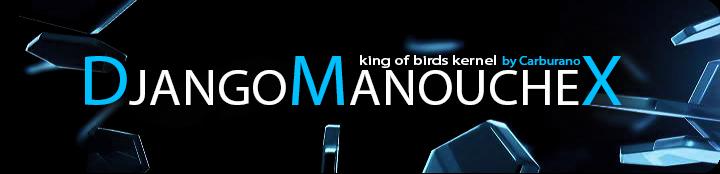 DjangoManouche X