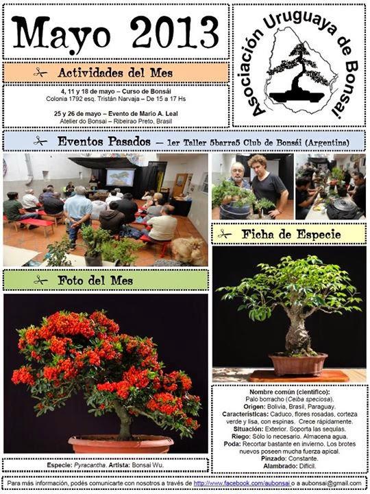 http://aubonsai.blogspot.com/2013/05/boletin-mayo-2013.html