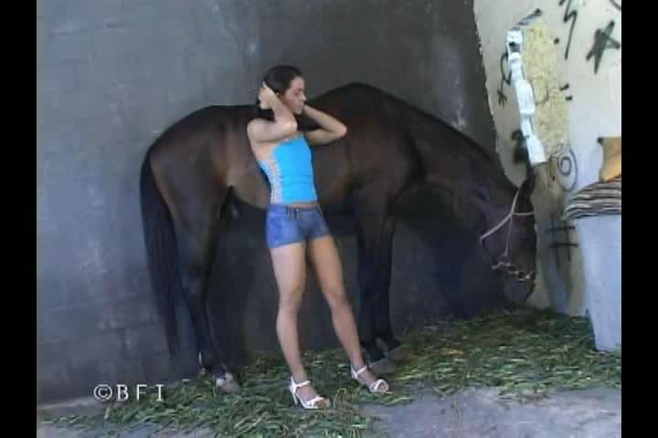 morena gostosa dando para o cavalo