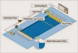 standar ukuran kolam renang dunia atau internasional