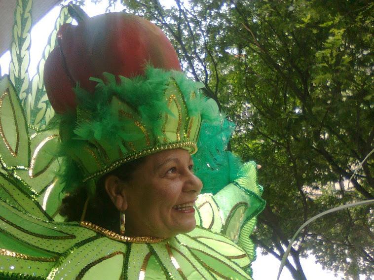 09.02.2013 Carnaval/Tom Maior