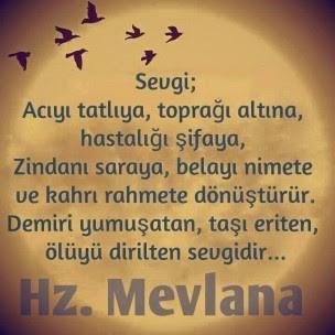 sevgixx -