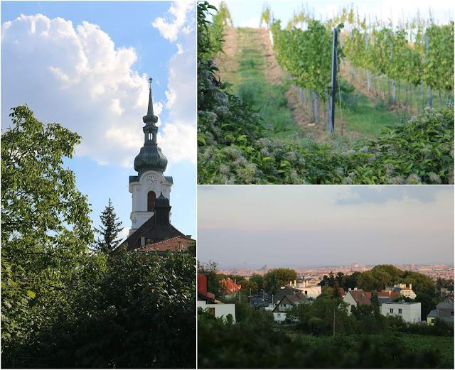 Wien, Österreich, Wien, Jausen, Vesper, Büffet, Wein