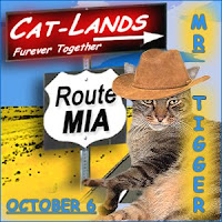 Oct. 6, 2011-Travels with Mr. Tigger- MIA Day