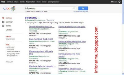 Google sitelink