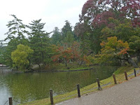 鏡池の紅葉