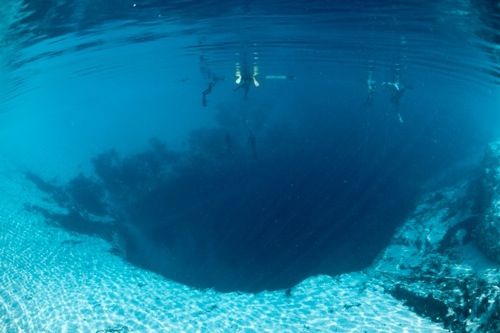 For Great blue hole belize diving sorry