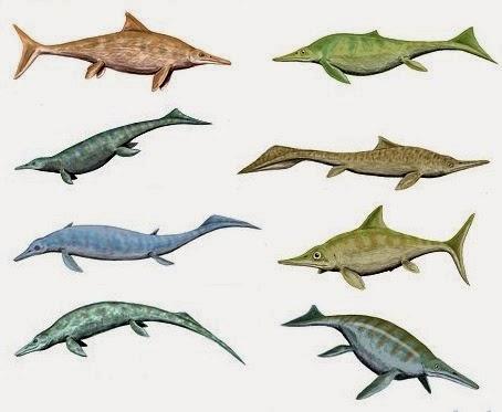 Ictiosaurios (lagartos peces) animal con i