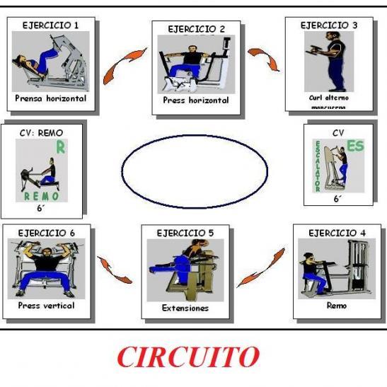 Circuito Fuerza Resistencia : En forma entrenamiento circuito