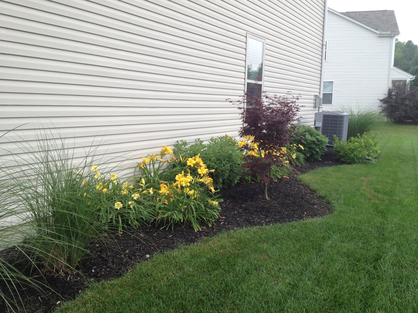 MY LIFE BY DESIGN Landscaping Update The Side Yard
