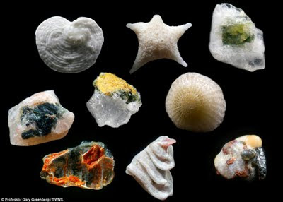 Increibles granos de arena