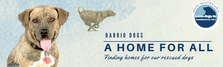 A Home For All Barrio Dogs