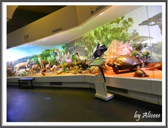 muzeul-antipa-bucuresti-monitor-cunoastere