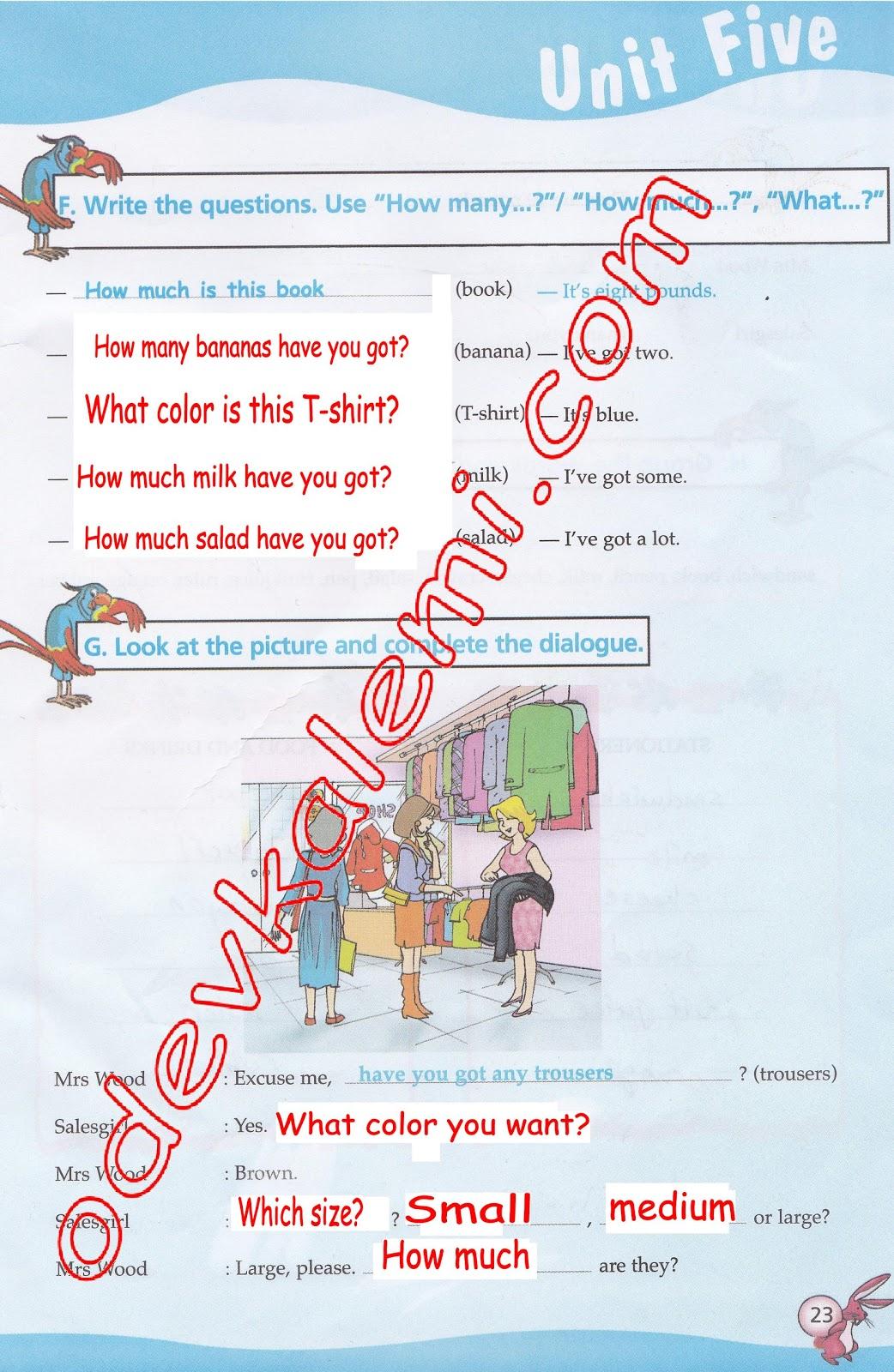 Sınıf ingilizce dersi çalışma kitabı cevapları 5 ünite