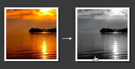 Grayscale effect CSS image hover effect