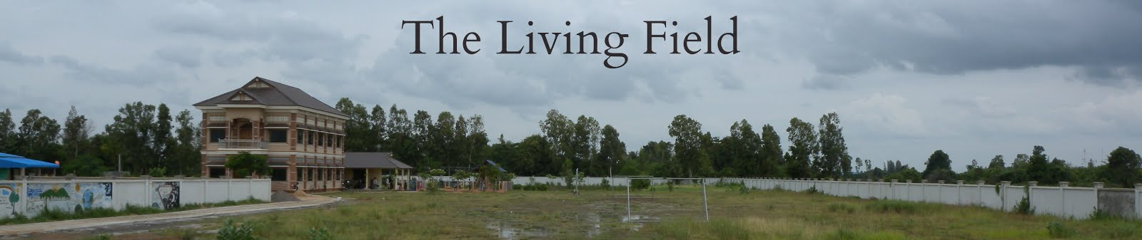 The Living Field