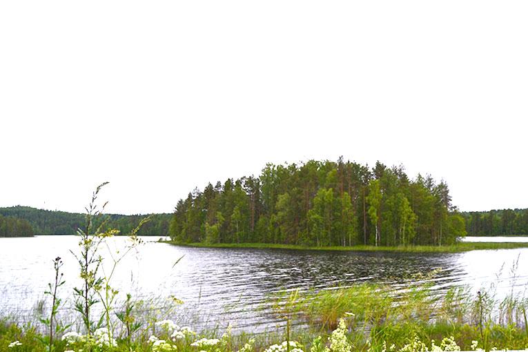 Travel, Finland, Savonranta, forest, vegetation,lake, wooden house, boat