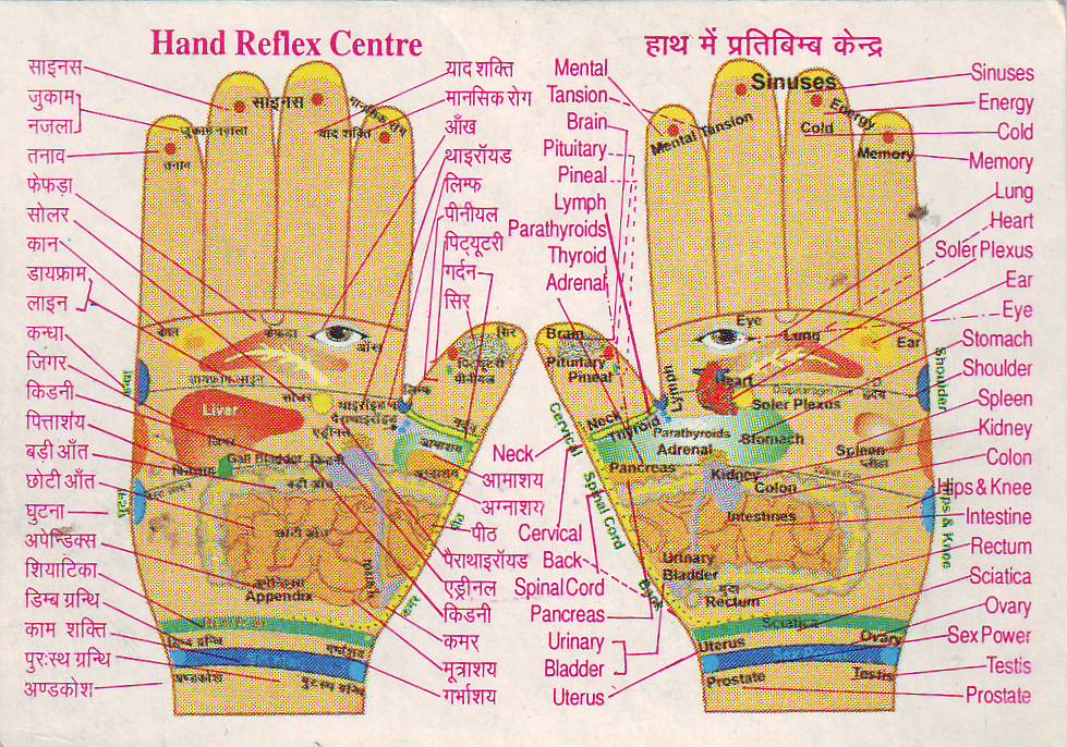 How To Know Disease From Mounts Palmistry