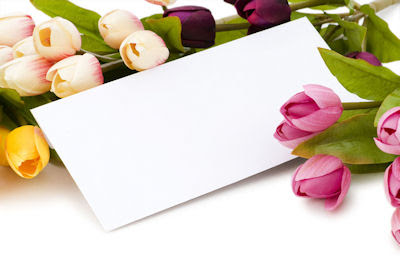 Fotografía de flores tulipanes de colores con espacio en blanco para escribir tu mensaje personalizado