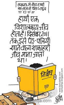 rahul gandhi cartoon, bsp cartoon, mayawati Cartoon, up election cartoon, indian political cartoon, corruption cartoon, corruption in india, congress cartoon