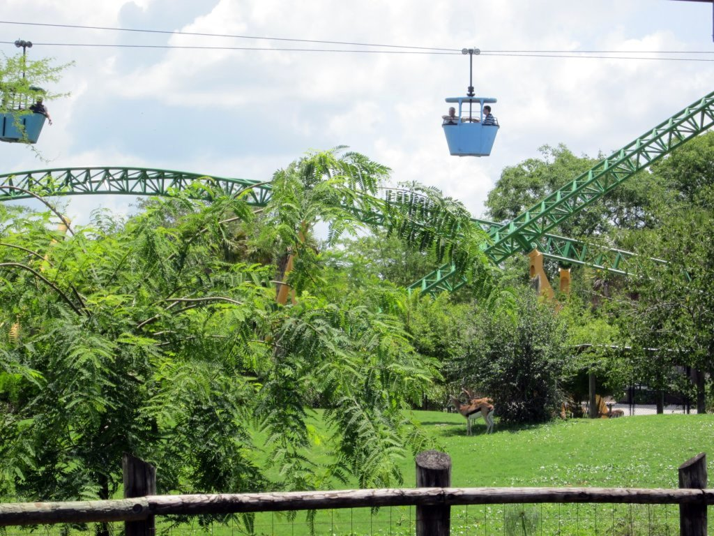 Top Ten Busch Gardens Tampa Bay Attractions Tar Heel Camper