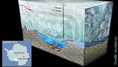 New Life Life Found in Antarctic Lake!