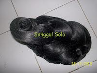 Sanggul SS1