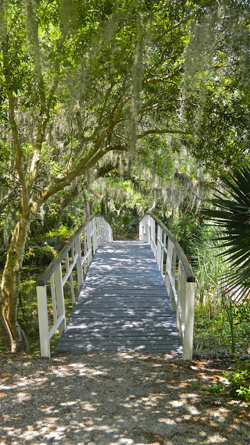 One of the bridges at Magnolia Plantation