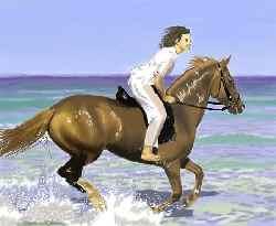 志方西部乗馬クラブ